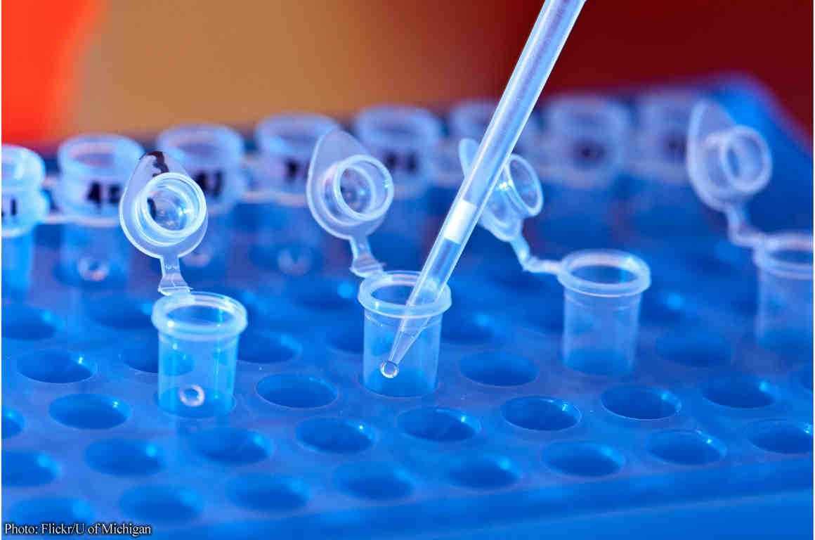 DNA Lab pipette