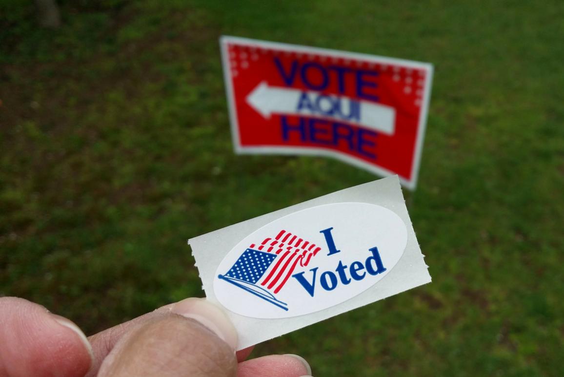 I Voted 2 (1160x775)